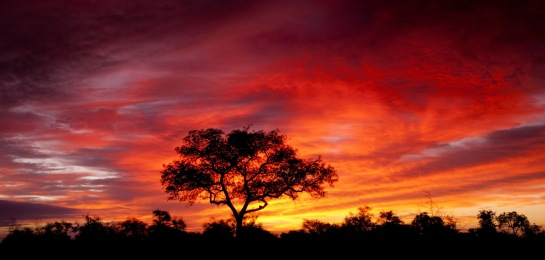South-Africa-Sunset